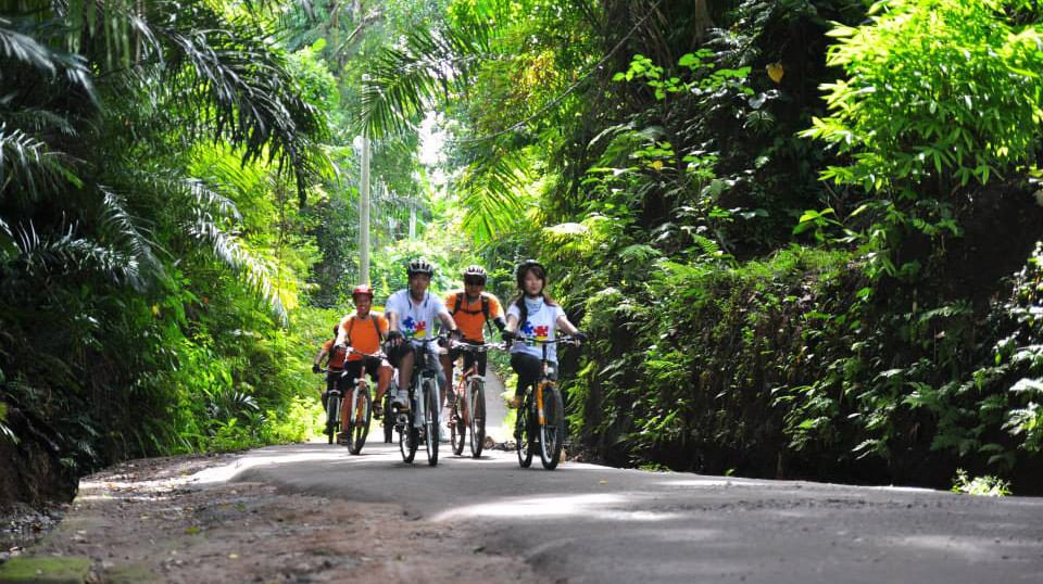 Walking & Cycling Tours in Bali