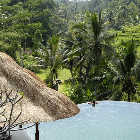 Villa Bayad Bali - Jungle Views - Ubud, Bali