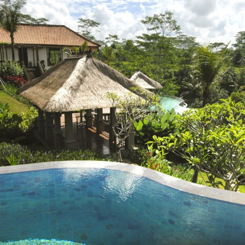 Villa Bayad Bali - Plunge Pool Views - Ubud, Bali