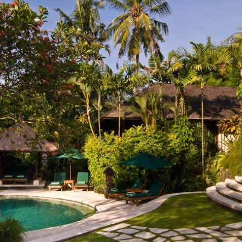 Villa Bougainvillea Bali - Pool and Grounds - Canggu, Bali