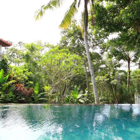 Villa Shamballa Moon, Ubud, Bali - Infinity Pool
