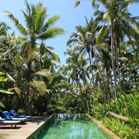 Villa Swarapadi, Ubud, Bali - Pool
