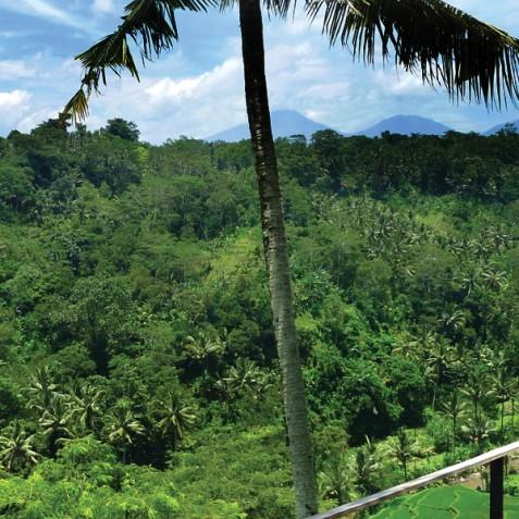 Villa Umah Tampih, Ubud, Bali - Balcony Views