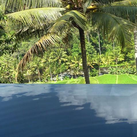 Villa Umah Tampih, Ubud, Bali - Infinity Pool