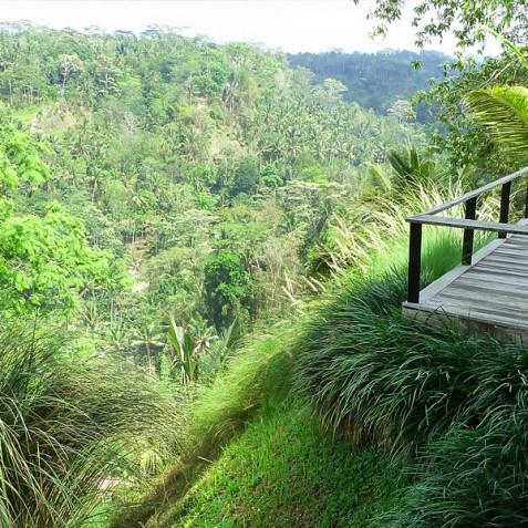 Villa Umah Tampih, Ubud, Bali - Jungle Views