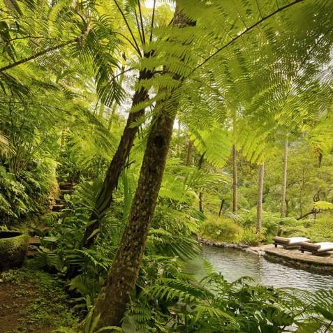 COMO Shambhala Estate, Bali - Water Garden at Kedara