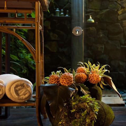 Fivelements Puri Ahisma, Bali - Spa Bathroom