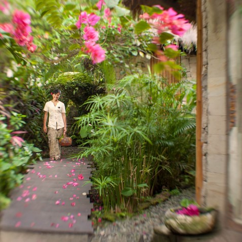 Fivelements Puri Ahisma, Bali - Pathways
