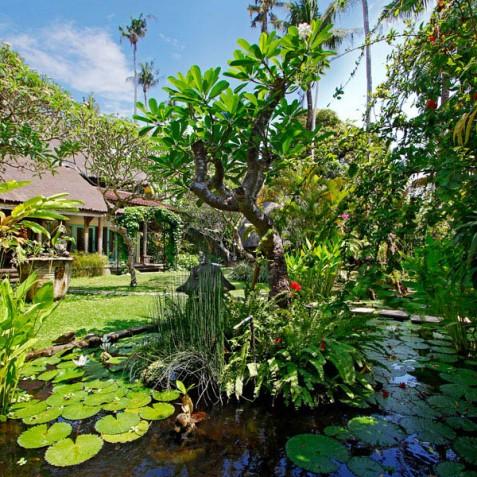 Villa Hibiscus, Sanur, Bali - Pond