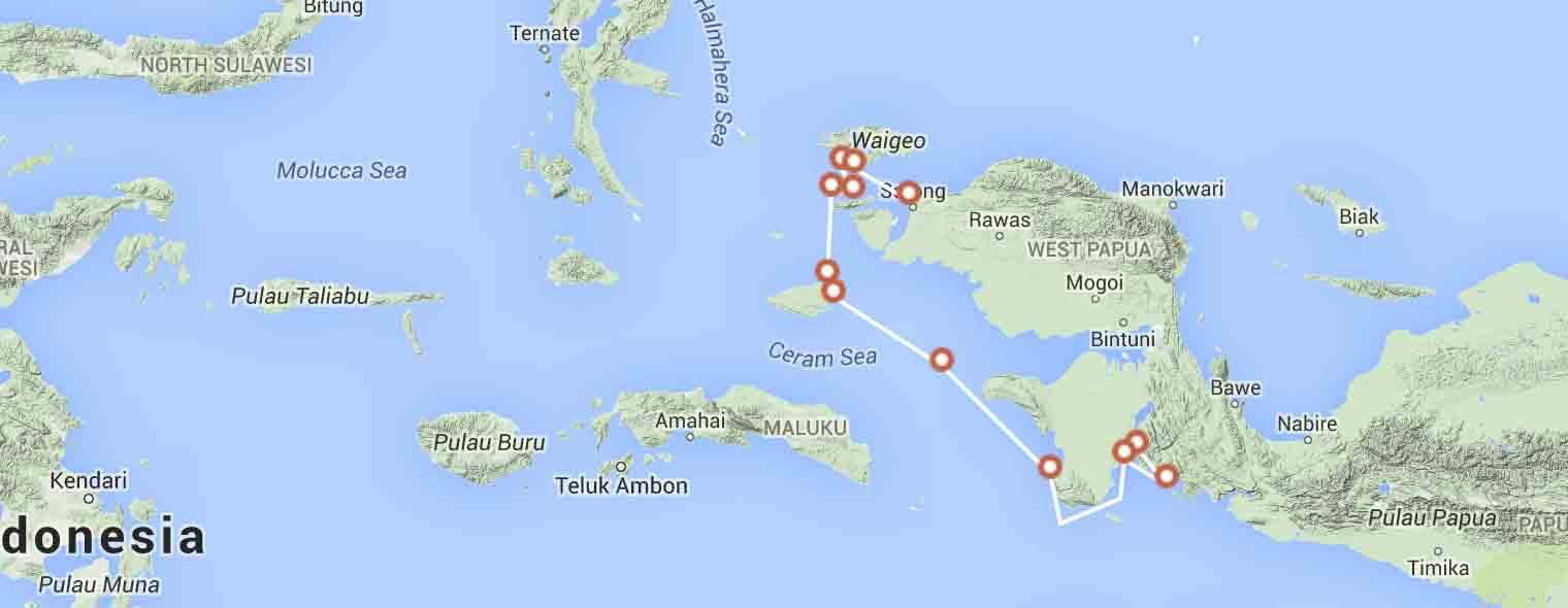 papua-birds-of-paradise-route