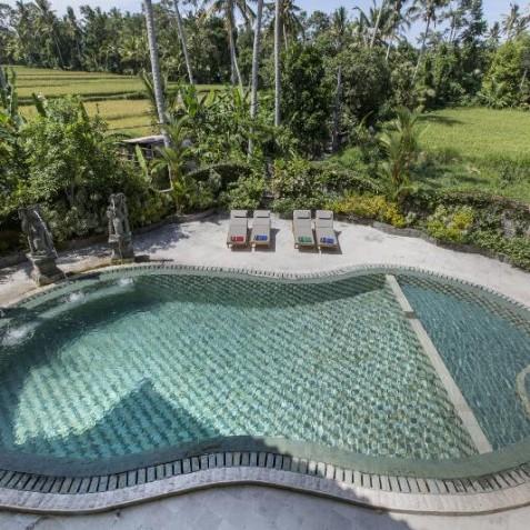 Pool with Ricefield Views - Bali Vitality Detox Retreats - Ubud, Bali, Indonesia