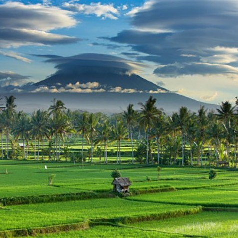 Ubud - Rice Fields and Mount Agung - Bali, Indonesia