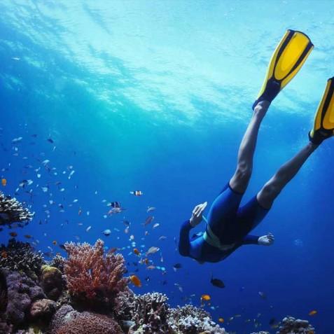Snorkelling - Bali - Luxury Yacht Charter, Bali, Indonesia