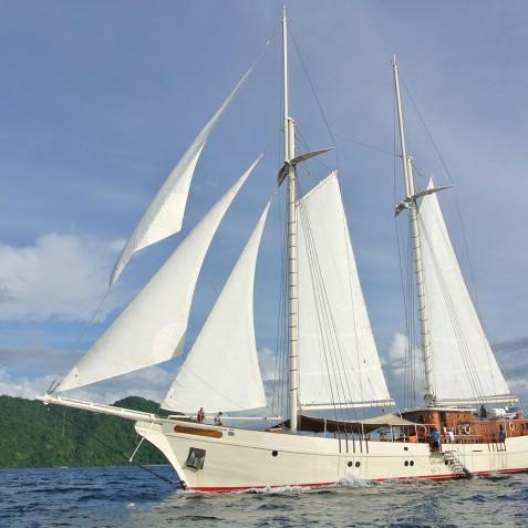 Sailing - Mutiara Laut - Luxury Yacht Charter Indonesia
