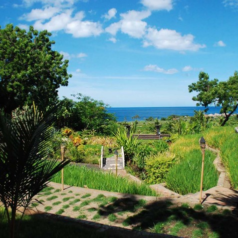 Gardens & Sea View - Zen Resort Bali - Indonesia