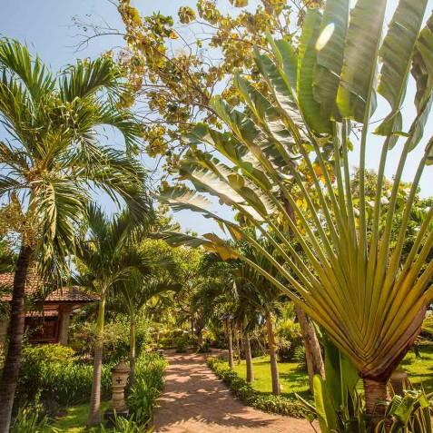 Gardens - Zen Resort Bali - Indonesia