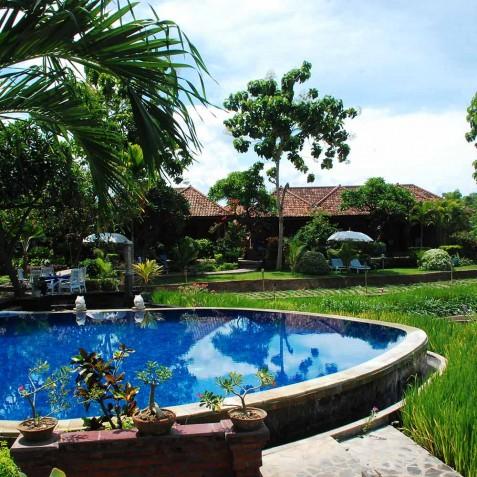 Pool & Gardens - Zen Resort Bali