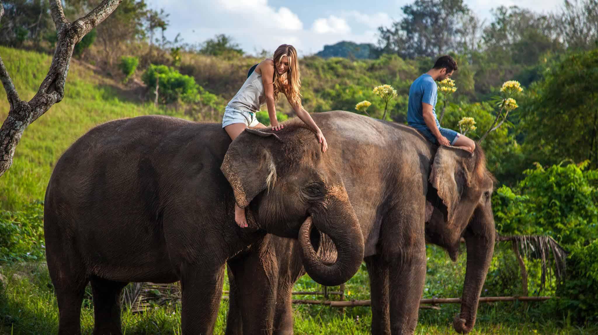 Bali's Wild Side - Animal Parks in Bali
