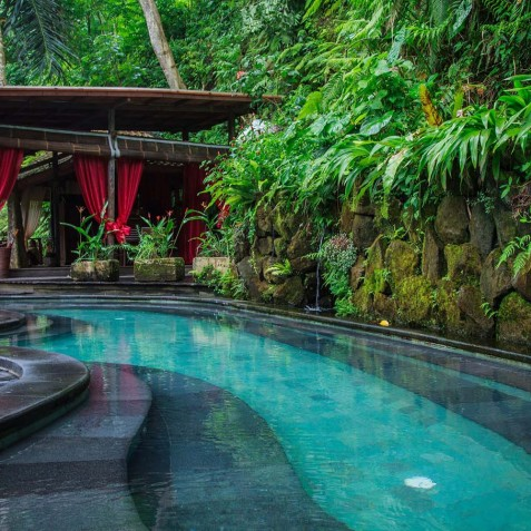 Swimming Pool - Svarga Loka Resort - Ubud, Bali, Indonesia