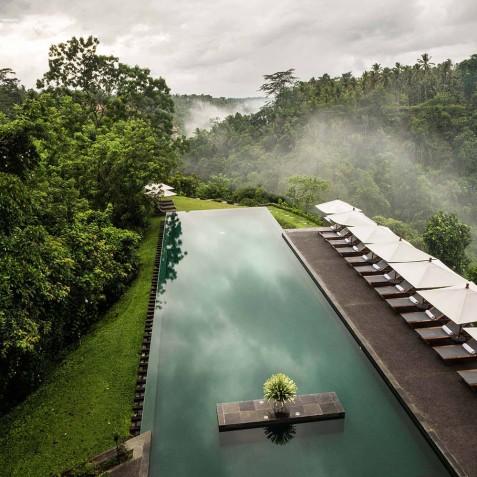 Infinity Pool - Alila Ubud