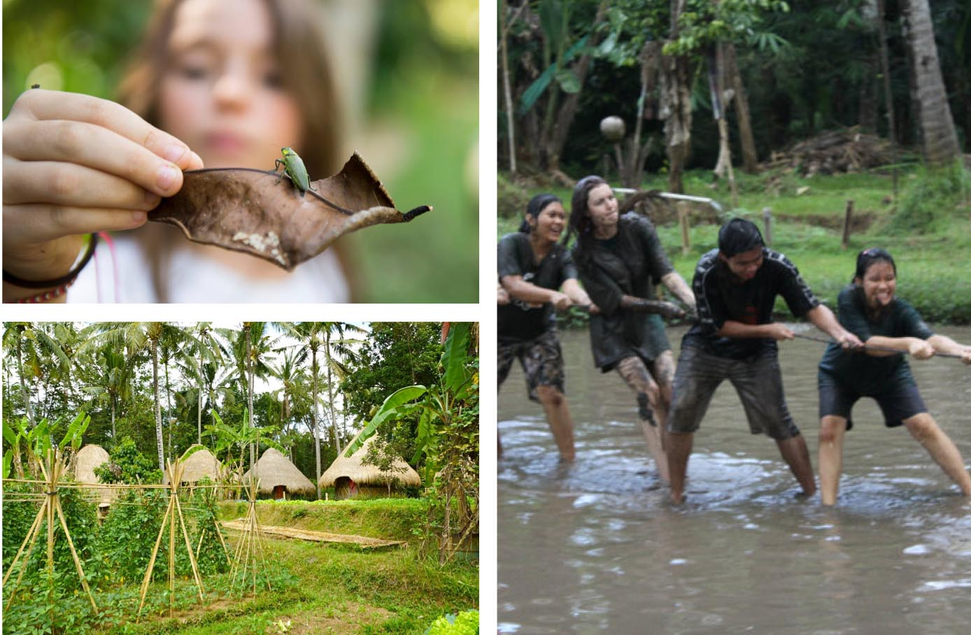 Green-Camp-Bali