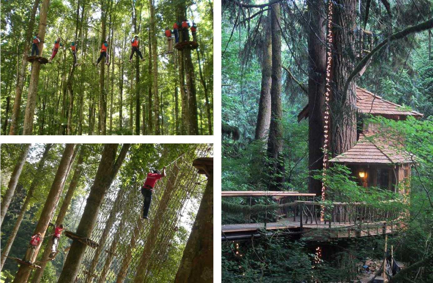 Bali-Treetop-Aventure