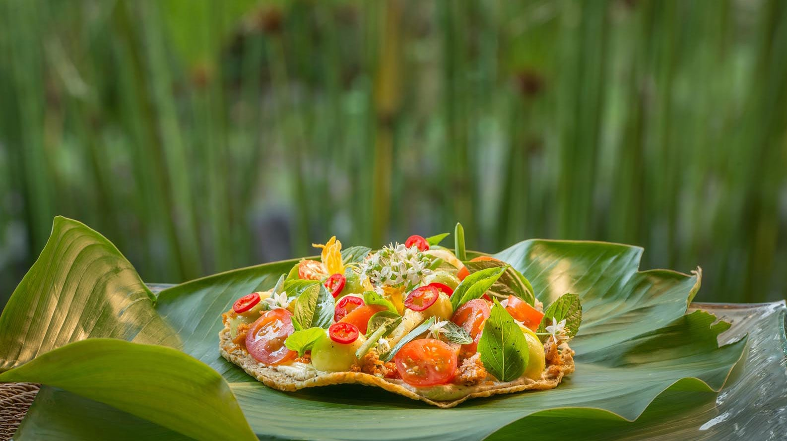 Fivelements, Bali's Best Vegetarian Restaurants