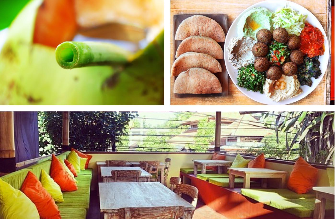 Zula-Vegetarian-Paradise