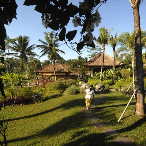 Villa Bayad Bali - Gardens - Ubud, Bali