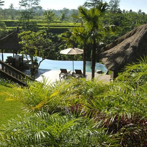 Villa Bayad Bali - Views over Pool - Ubud, Bali
