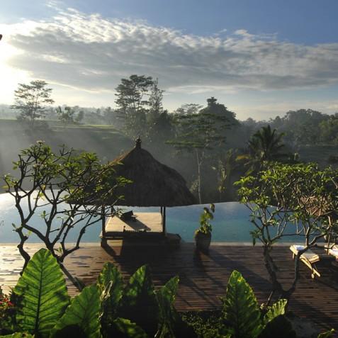 Villa Bayad - Morning Views - Ubud, Bali