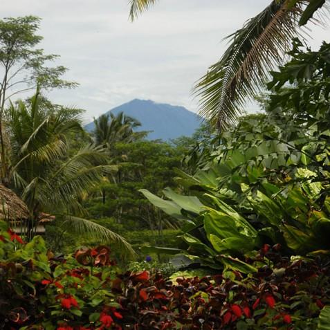 Villa Bayad Bali - Mount Agung - Ubud, Bali