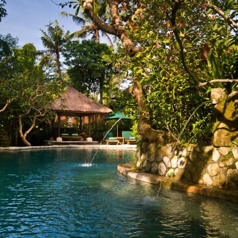 Villa Bougainvillea Bali - Pool - Canggu, Bali