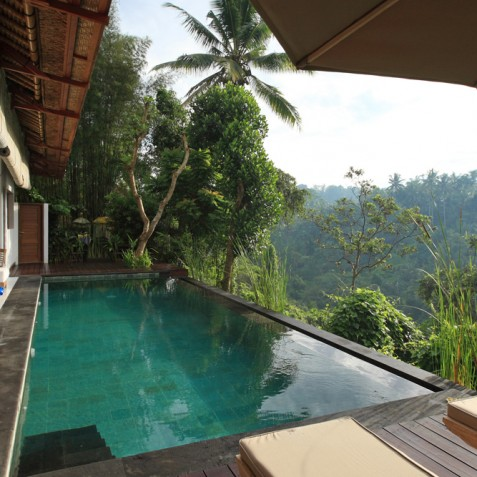 Villa Shamballa Ubud Bali - Pool and Valley