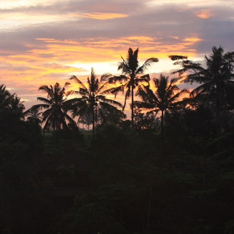 Villa Shamballa Ubud Bali - Sunset