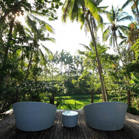 Villa Swarapadi, Ubud, Bali - Rice Terrace Views