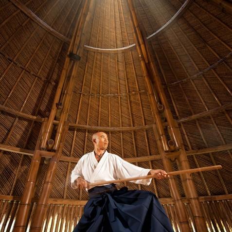 Fivelements Puri Ahisma, Bali - Sacred Arts - Aikido