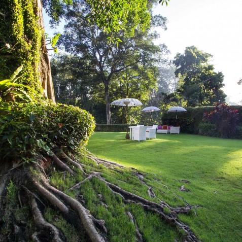 Sukhavati Ayurvedic Retreat & Spa, Bali - Gardens