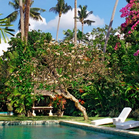 Villa Hibiscus, Sanur, Bali - Pool and Garden