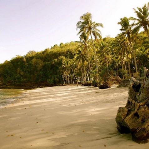 Day Trips - Haruku - Luxury Yacht Charter, Bali, Indonesia