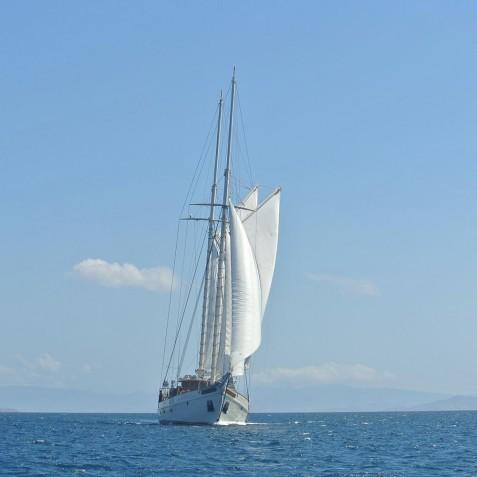 Sail - Mutiara Laut - Luxury Yacht Charter Indonesia