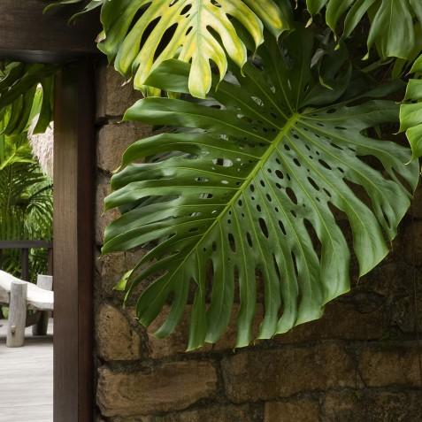 Tejasuara Residence - COMO Shambhala Estate, Bali, Indonesia
